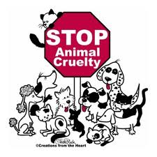 help animals by donating used car